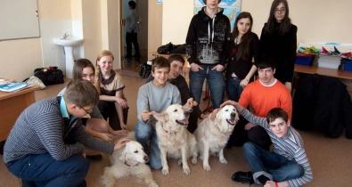 Заставка для - Встреча с собаками